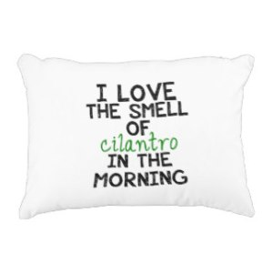 i_love_cilantro_personalize_background_accent_cushion-rcaa72969bdb24daea107e20ac5708104_z6i0f_324